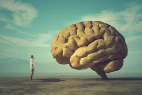La-Neuroscienza-nel-team-management